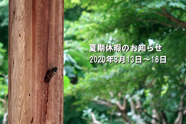 しんこしけんせつ/夏/大﨑